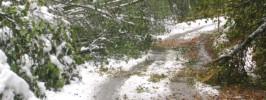 snegolom2
