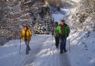 Decemberski pohod šentjanških vandrovčkov
